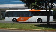 Gobierno continúa sin saber qué hacer con el Metro Bus http://www.inmigrantesenpanama.com/2015/06/09/gobierno-continua-sin-saber-que-hacer-con-el-metro-bus/