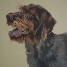Alan Moir. Teddy - acrylic on canvas. www.facebook.com/alan.moir.portraits