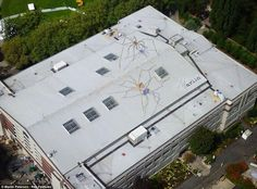 Ieks! Impressive, Life-Like Mural Of Two Giant Spiders 'Crawling' On Top Of A Roof - DesignTAXI.com