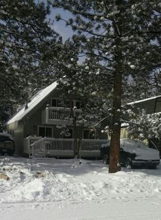 Big bear and snow Jan. 2015