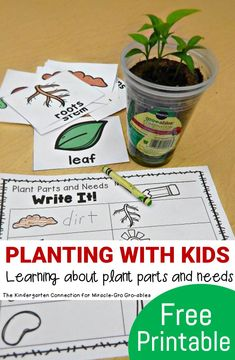 Planting With Kids - Plant Parts and Needs Make planting with kids fun and hands on, while learning about plant parts and needs with this fun and free writing center! 1st Grade Science, Elementary Science, Science Classroom, Teaching Science, Kindergarten Activities, Science For Kids, Science Activities, Science Area, Preschool Class