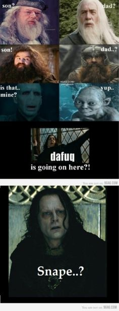 funny harry potter/ lord of the rings thing.