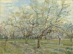 The White Orchard, 1888, Vincent van Gogh, Van Gogh Museum, Amsterdam (Vincent van Gogh Foundation)