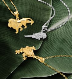 Celebrate your love of animals and conservation efforts around the world for National Wildlife Day. #QualityGold #NationalWildlifeDay #Charms #AnimalLover