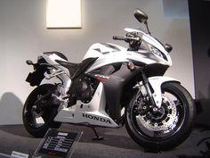 white cbr | Honda CBR 600 RR