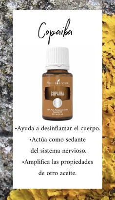 Discover a wellness-focused lifestyle with pure, whole-life solutions. Copaiba Essential Oil, Essential Oils For Pain, Essential Oils Guide, Natural Essential Oils, Young Living Essential Oils, Essential Oil Blends, Natural Oils, Young Living Copaiba, Young Living Oils