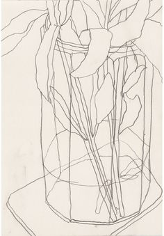 unknown artist- contour line drawings