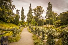 The gardens at Brodsworth Hall, England