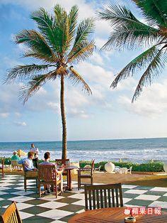 斯里蘭卡本身是個海島,海鮮收穫豐富;肥沃的土壤種植出大量香草,帶來不少咖哩美食。「Galle Face Green」是斯里蘭卡首都可倫坡海邊...
