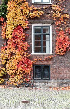 Copenhagen in the fall.