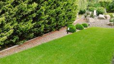 """7 kedvelés, 0 hozzászólás – SD KERT - Spiegel Ákos (@topgarden) Instagram-hozzászólása: """"#gardening #gardendesign #kerttervezés #kerttervező #kert #garden #andezit #kertépítés #topgarden…"""" Sidewalk, Instagram, Side Walkway, Walkway, Walkways, Pavement"""