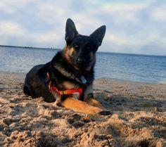 Captain enjoying the beach