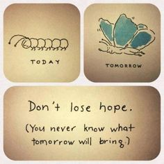 Don't lose hope, you never know what tomorrow will bring.Don't lose hope, you never know what tomorrow will bring. The Words, Cool Words, Great Quotes, Me Quotes, Inspirational Quotes, Qoutes, Motivational Quotes, Daily Quotes, Quotes Images