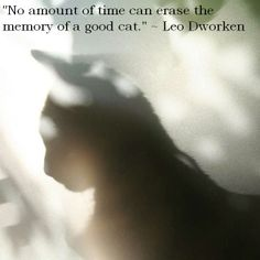 """No amount of time can erase the memory of a good cat."" Leo Dworken,\.  So true"