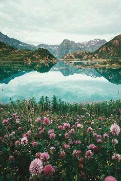 Lofoten, Norway Enjoy the world Lofoten, Beautiful World, Beautiful Places, Beautiful Scenery, Beautiful Forest, Places To Travel, Places To Visit, Travel Destinations, All Nature