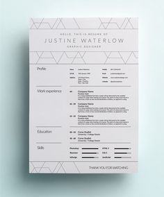 The Creative CV.  The best font to use is Helvetica. NEVER use Times New Roman.