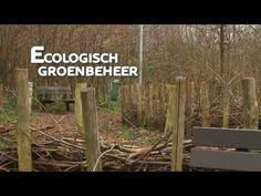 Per M² - Groentips : Ecologisch groenbeheer