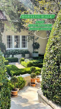 Stories • Instagram Planter Garden, Besties, Plants, Instagram, Plant, Bff, Plant Containers, Planets