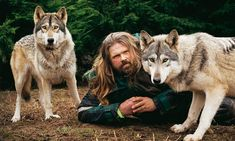 """This guy is SO incredible! He's practically part wolf himself. He's totally included in his """"wolfpack"""". He wrote a very interesting book on wolf """"society"""". Wolf Spirit, Spirit Animal, Mundo Animal, My Animal, Wolf Name, Pet Wolf, Wolf People, Husky, Wolf World"""