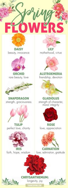 Flower Drawing Beauty, love, hope: Spring flower meanings - What special message does a particular kind of flower send? Here are some traditional symbolic flower meanings, representing different aspects of personality and character. Flower Tattoo Meanings, Tattoo Flowers, Orchid Tattoo Meaning, Lily Flower Tattoos, Flower Chart, Flower Symbol, Rare Orchids, Flower Names, Language Of Flowers