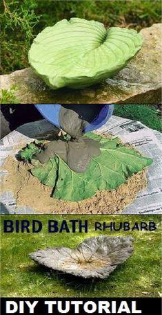 You don't have to pay a lot for a one-of-a-kind bird bath. Look for plants with large leaves to add to your garden. Then turn one of those big beauties into a homemade bird bath. Diy Garden, Outdoor Gardens, Concrete Bird Bath, Bird Baths Homemade, Bird House Kits, Bird Bath Fountain, Concrete Garden, Backyard Landscaping, Bird Bath Garden