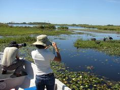 Esteros del Iberá, Argentina. Second largest wetland in the world! Cocodrilos, carpinchos, venados in these floating chunks of land... Increible