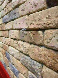 Escondido en el muro.