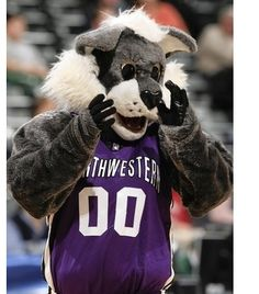 college mascots   purple-college-basketball-mascot.jpg