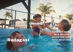 Bad Memes, Dankest Memes, Funny Memes, Hilarious, Classic Memes, O Hobbit, Hobbit Funny, Concerning Hobbits, Jrr Tolkien
