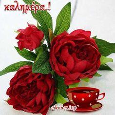 Όμορφες εικόνες τοπ για καλημέρα.! - eikones top Raspberry, Fruit, Plants, Facebook, The Fruit, Flora, Raspberries, Plant, Planting