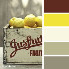 Combinations of Colors, Palette 1 No. 31