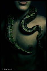 Slither by L-u-t-h-e-r on DeviantArt Monster High, Snake Photos, Snake Girl, Beautiful Snakes, Dark Men, Birth Mother, Men Photoshoot, Dark And Twisted, Male Photography