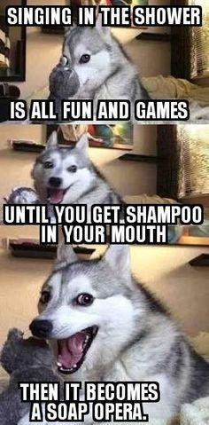 Humorvolle Hundebilder und Meme Humorous dog pictures and memes Funny Animal Jokes, Really Funny Memes, Memes Humor, Stupid Funny Memes, Funny Relatable Memes, Funny Animals, Funny Humor, Puns Hilarious, Dog Humor