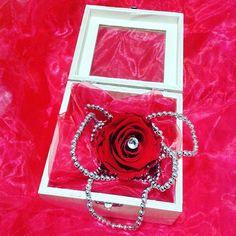 Coffret Glamour Rose éternelle naturelle rouge ❤ R❤SE ETERNELLE 100% NATURELLE NE FANE PAS❤ AUCUN ENTRETIEN #cadeaufetedesmeres #FeteDesMeres http://artifleurs-fleurs-artificielles.com