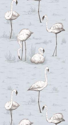 Papier peint Contemporary Restyled Flamingo (Cole and Son chez Au fil des Couleurs)