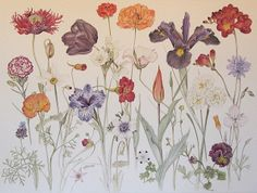 artnet Galleries: Delicate Spring by Pamela Glasscock from Ma(i)sonry Napa Valley