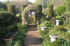 Tea at Rosehurst Garden, Pmb