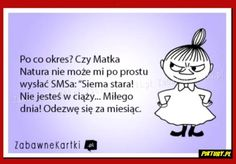 Polish Memes, Weekend Humor, Motto, Song Lyrics, Quotations, Haha, Jokes, Thoughts, Motivation