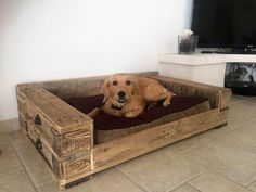 Pallet dog house diy ideav