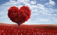 Beauty Valentine wallpaper for desktop.