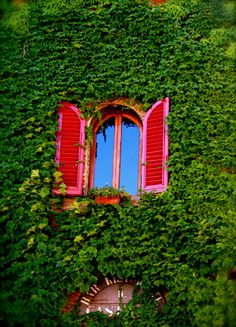 Dolce Vita in Certaldo...Tuscany