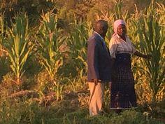 Locals in their veggie fields, Calueque Angola