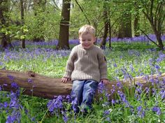 Bluebells and my gorgeous boy xx