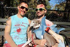 29 Adorable Ways To Dress Up With Your Dog This Halloween Ewok Dog Costume, Unicorn Dog Costume, Cute Dog Costumes, Hotdog Costume, Hallowen Costume, Couple Halloween Costumes, Diy Costumes, Costume Ideas, Halloween Ideas