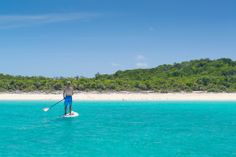 Swimming Pigs and Paddleboarding Exumas by Patrick Bennett