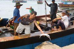 Thừa Thiên - Huế chi trả tiền bồi thường của Formosa cho dân - Zing.vn