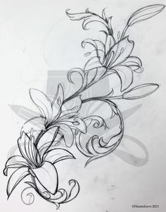 lily tattoo sketch | filigree lily | hautedraws