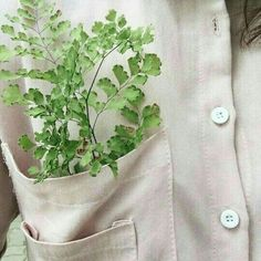 Plants Aesthetic Witch Ideas For 2019 The Effective Pictures We Offer You About Plants v Asui Boku No Hero, Flower Yellow, Adam Parrish, Plant Aesthetic, Aesthetic Green, Aesthetic Hair, Neville Longbottom, Plants Are Friends, Little Bit
