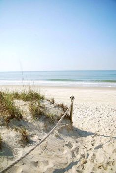 inviting open strand of shore.to explore.and kick your toes into the genlte ocean as it scallops the sandy floor~! Ocean Beach, Beach Day, Summer Beach, White Sand Beach, Spring Summer, Summer Decoration, Psalm 31, I Love The Beach, Beach Scenes