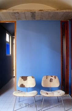 In one of the bedrooms a pair of cow-hide chairs is arranged against a bright blue wall. Photographer: Jacques Dirand Designer/Stylist: Architect: Le Corbusier Location: the Jaoul House, Paris